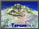 Tercan