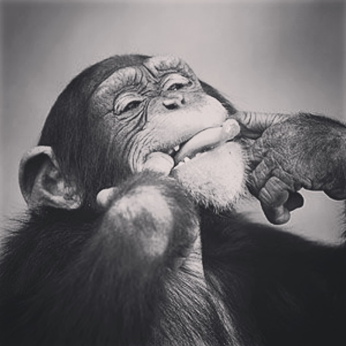 TiThion
