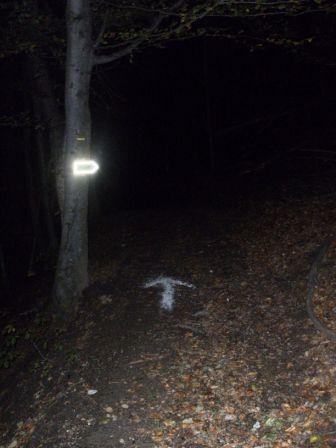 R cit de la course la marche au clair de lune 2009 par - Quand semer la mache avec la lune ...